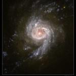 Vida extraterrestre - ngc3310 galaxia starburs
